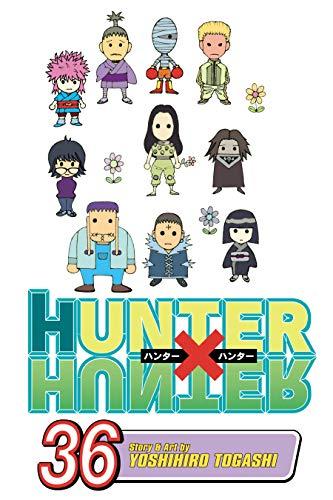 Hunter x Hunter, Vol. 36: Balance (English Edition)