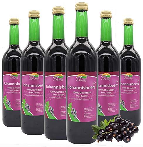 BLEICHHOF® [6er Pack] Schwarzer Johannisbeersaft - 100% leckerer Direktsaft - Frische Früchte - ohne Zuckerzusatz und Zusatzstoffe - Nachhaltig hergestellt im Familienbetrieb