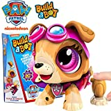 Paw Patrol Toys for Girls Skye - Build a Bot Robots for Kids - Stem Toys for Kids Learning Toys Educational Toys for Kids Ages 3-10