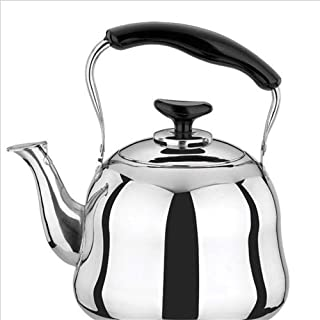 Singing Kettle 5L6L-Stainless Steel