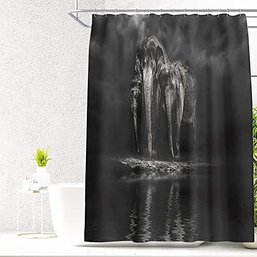 DQGZYF Elefant in der Nacht Duschvorhang Polyester wasserdicht & schimmeldicht Home Badezimmer Dekoration Vorhang mit Haken 180 * 180cm