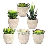 Linkstyle 6 Pcs Verschiedene Topf Sukkulenten Pflanzen Dekorative künstliche Sukkulenten Topf Faux Kaktus Aloe mit grauen Töpfen Künstliche Topiary Pflanze Topf