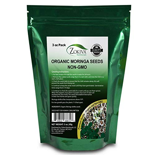 Zokiva Nutritionals - Moringa Seeds Non-GMO Organic - Premium Quality PKM1 Semillas De Moringa Seeds for Planting - Malunggay Drumstick Tree - 3oz Pack in Stand Up Pouch