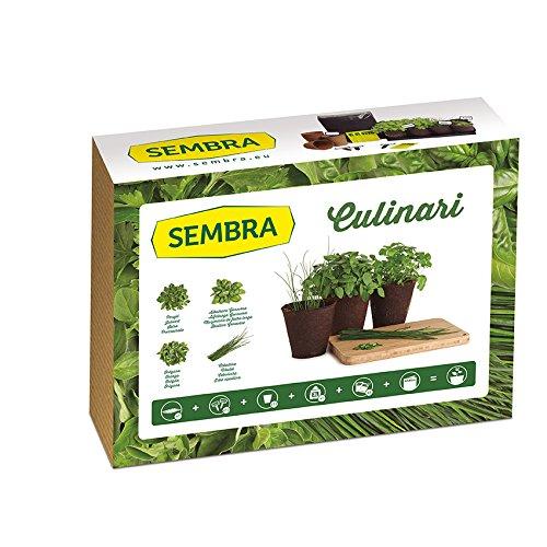 Sembra Big Kit Cultivo, 25.5x33.5x9 cm