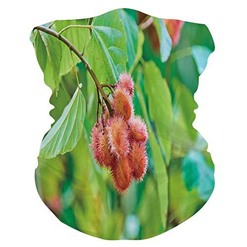 IS139855 Bandana Face Scarf for Outdoor Activities - Rambutan Fruits On