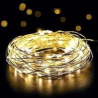 Le luci fata Micro LED sul filo di rame con 100 LED bianco caldo fornisce una illuminazione decorativa lucido per piccole attività. Lascia la tua fiori matrimonio una scintilla, illumina i vostri piccoli vetri decorativi e lanterne o decorare la stri...