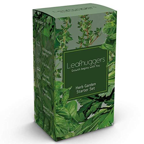 Kit Herbes Aromatiques Interieur Kit Pret A Pousser Herbe Aromatique Plante Verte Interieur Mini Jardin Débutant 4...
