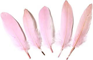 pink coque feathers