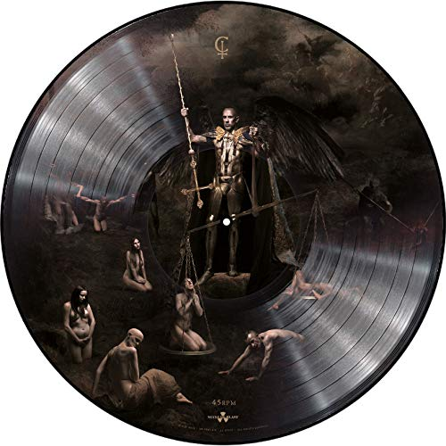 I Loved You At Your Darkest (Limited Gatefold Double Vinyl Pic Disc) [VINYL]