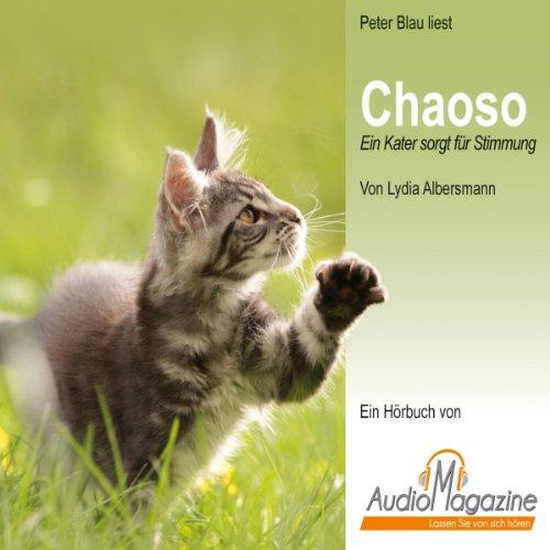 Chaoso Titelbild