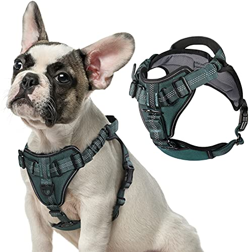 rabbitgoo Dog Harness No Pull, Adjustable Dog Walking Harness with 2 Leash Clips & Shock-Absorbing Bungee Straps, Soft Padded Pet Vest Harness Reflective Chest Harness with Handle for Medium Dogs, M