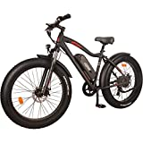 DJ Fat Bike 750W 48V 13Ah Power Electric Bicycle, Matte Black, LED...