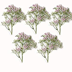 Silk Flower Arrangements Artificial Flowers, 5 Pcs Baby's Breath Flower Faux Gypsophila Bouquets for Home Table Centerpieces Wedding Party Floral Arrangements Decoration,Pink