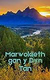Marwolaeth gan y Dyn Tân (Welsh Edition)
