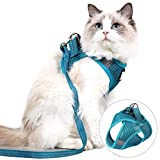 Best Harnesses For Cats - Cat Harness and Leash Set for Walking Lightweight Review