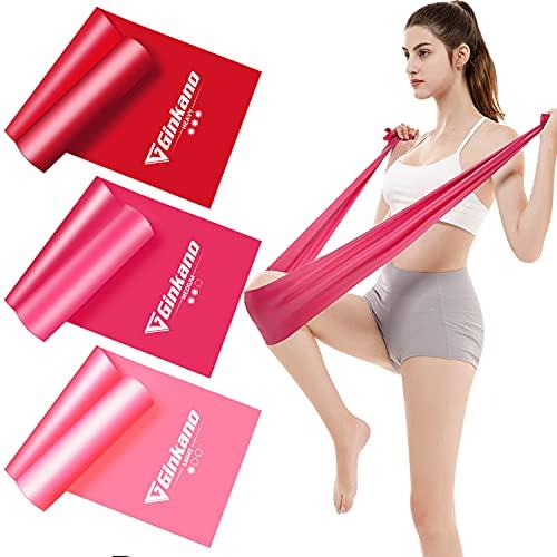 Haquno Fitnessband 3er-Set Theraband Gymnastikband Lang Fitnessbänder Widerstandsbänder in 3 Stärke, Resistance Band Trainingsband für Crossfit, Muskelaufbau, Yoga, Pilates für Männer und Frauen rot