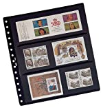 Pardo 100800 - Pack de 10 fundas de sellos - 16 alojamientos , Lámina central opaca negra y transparente a cada lado