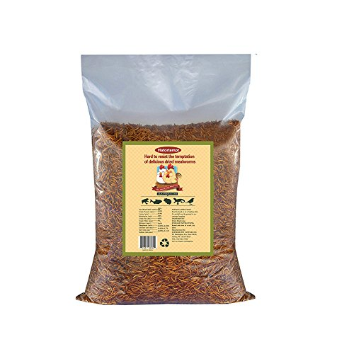 Gardenpt 22 LB Dried Mealworms Bulk for Wild Birds, Chicken, Duck and More (2 Bags of 11LBS)