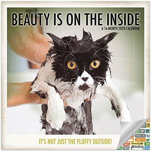 Beauty is on The Inside Calendar 2020 Set - Deluxe 2020 Funny and Inspirational Cats Wall Calendar with Over 100 Calendar Stickers (Beauty Gifts, Office Supplies)