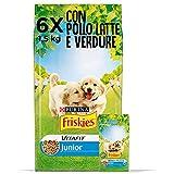 PURINA FRISKIES Vitafit Junior Croquettes pour Chien avec Poulet et l'ajout de Lait et légumes - 6 Sacs de 1,5 kg chacun
