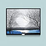 Cuadro En Lienzo Distribución Protección Caja Cubierta Decoración Ocultar Pinturas Medidor eléctrico Caja Decorativa Pintura Lienzo Pintura Pintura Decoración ( Color : 010 , Size (Inch) : 40x30cm )