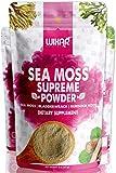 Wixar Wildcrafted Sea Moss Powder – (8 Ounces)...