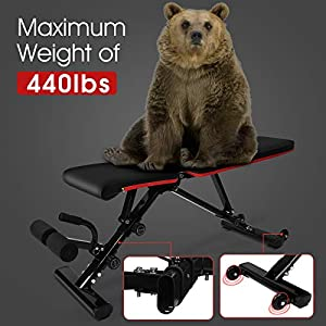 Weight Bench Adjustable , WGCC Fast Foldable Strength Training Bench for Full Body Workout with 36 Adjustment Combinations - Weight Lifting /Flat/Incline/Decline Workout Bench for Home Gym