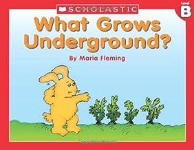 Level B - What Grows Underground? (Little Leveled Readers: Level B)