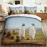 Ropa de Cama cálida y cómoda de Tres Piezas Que Incluye 1 Funda nórdica y 2 Fundas de Almohada, Funda con patrón de pingüino Animal 200cm * 200cm-200x200cm + 50x75cmx2