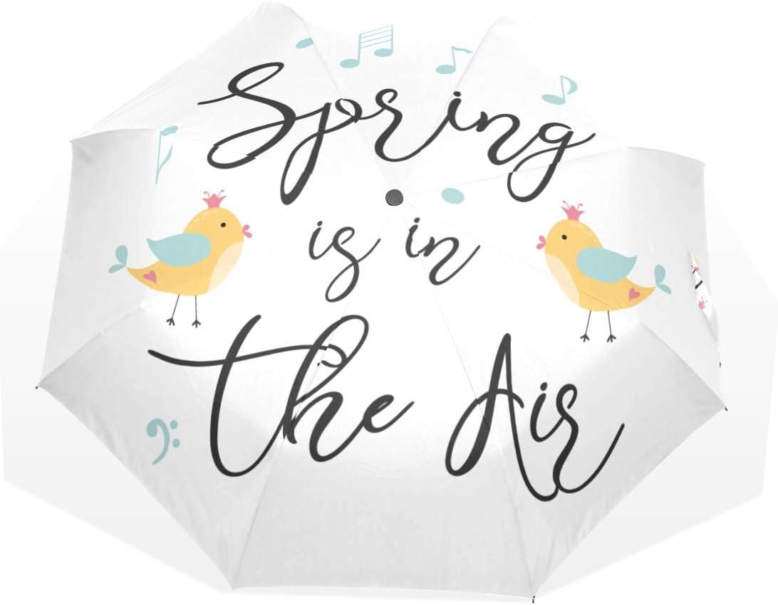 Jacksonville Mall Sun And Rain Umbrella Hello unisex Spring Umb 3 Welcome Fold Season Art