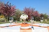 AmaCasa Vlies Tischband Tischläufer Flower Vlies Hochzeit Kommunion 23cm/25m Rolle (Orange, Vlies) - 6