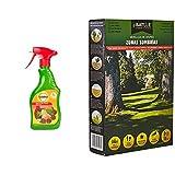 Herbicida Natural, Origen 100% Orgánico Con Spray Pulverizador, Listo Para Usar Con Efecto Rápido + Semillas De Césped - Césped Zonas Sombrías 1Kg - Batlle