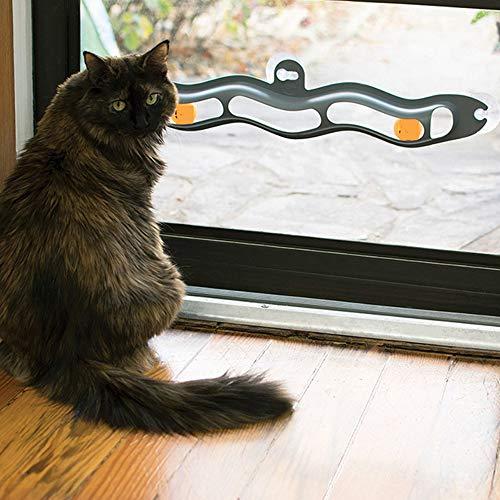 Walant Katzenspielzeug,Katze Sauger Fenster Trackball,Katzen Interaktives Trackball-Spielzeug mit 2 Klingeln Pong Ball,beruhigende Stimmung,Puzzle-Spiele und Race Track für Katzen Pet Spielzeug