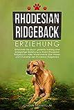Rhodesian Ridgeback Erziehung: Entwickeln Sie durch gezieltes Training eine einzigartige Beziehung zu Ihrem Rhodesian Ridgeback – Alles Wissenswerte über ... des Rhodesian Ridgeback (German Edition)