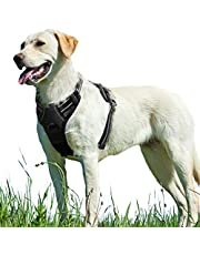 No Pull Dog Harness with Front Clip, Walking Pet Harness with 2 Metal Ring and Handle Reflective Oxford Padded Soft Vest for Small Medium Large Breed
