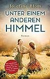 Unter einem anderen Himmel: Roman von Josefine Blom