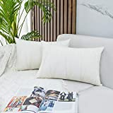 JUSPURBET Decorative Velvet Throw Pillow Covers with Velvet Striped,Pack of 2 Cushion Covers for Sofa Couch Bed,16x24 Inches,Cream White