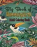 Glass Hummingbird Feeders - Best Reviews Guide