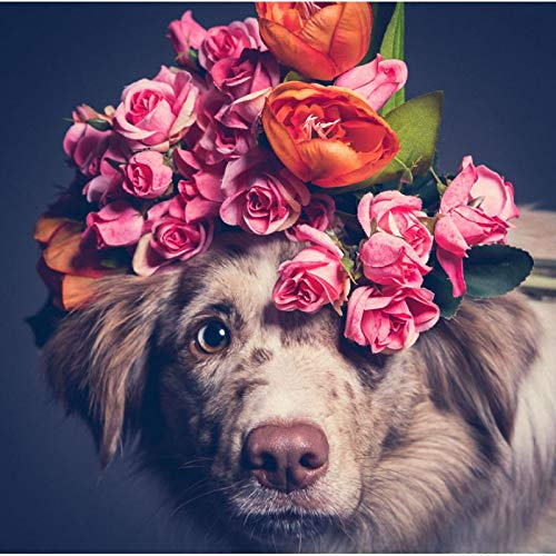 Lazodaer - Kit de pintura de diamante 5D para adultos, para decoración de pared del hogar, perro con flores, 30 x 30 cm