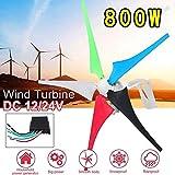 ZDW Turbina de 800W 12V / 24V generador de viento 5 Hoja Controller + viento Fit Set corriente de la red de suministro Accesorios de montaje (voltaje: 12V),12V