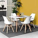 DORAFAIR Set aus Esstisch Rechteckig und 4 Skandinavischen Weißer Stühlen, für Küche Esszimmer...