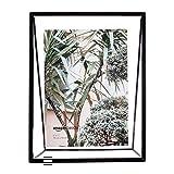 AmazonBasics - Marco de fotos flotante, diseño de cuña, 13 x 18 cm, color negro