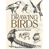 Drawing Birds (Dover Art Instruction) (English Edition)