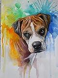 mlpnko DIY Dipingere con i Numeri Ritratto dell'animale Domestico DIY Dipinto ad Olio Kit Dipingere con i Numeri Kit per Adulti Principianti Bambini