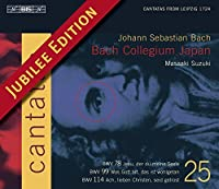 Bach: Cantatas, Vol 25 (BWV 78, 99, 114) by Bach Collegium Japan (2004-07-20)