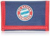 FC Bayern München Jungen...