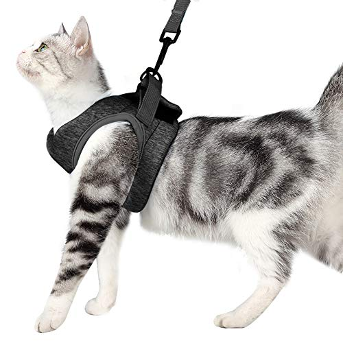 Dotoner Set aus Katzengeschirr und Leine mit ultraleichtem Kätzchenhalsband, weich und bequem, Laufjacke, Laufdämpfung, entweichsicher, geeignet für Kätzchen und Kaninchennachwuchs(M,Grey)