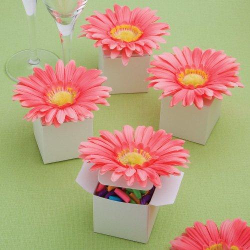 Perfect effen collectie stijlvolle roze Gerbera madeliefje versierde doos gunsten
