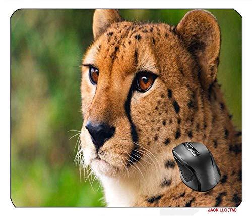 huatongxin 25X30cm Alfombrilla de ratón Alfombrilla de ratón Cat Family Pet Love Happy Animal Young Cute 4