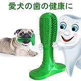 犬用歯ブラシ 歯磨き 犬用おもちゃ 犬口腔ケア 犬健康 天然ゴム製 中小型犬 歯クリーナー ペット用歯ブラシ